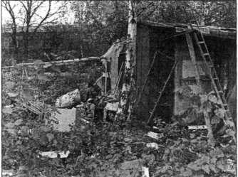 In dieser verfallenen Laube auf einer Bochumer Brache wurde Josef Anton Gera tödlich zusammengeschlagen. (waz-Bild: H. Beifuß)